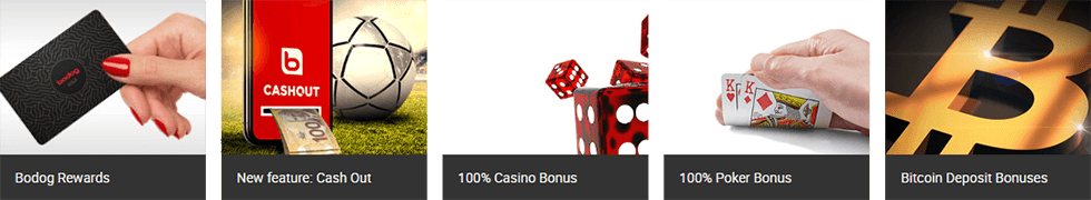 Bodog Casino offers you many bonuses and promotions