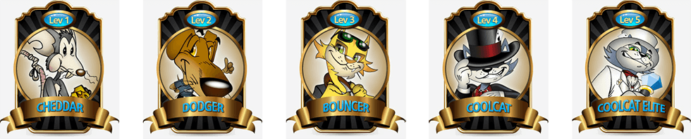 The VIP Club at CoolCat casino contains 5 levels