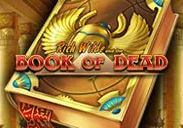Play the exciting Book of Dead slot game at bwin casino